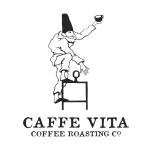 VITA_logo-copy
