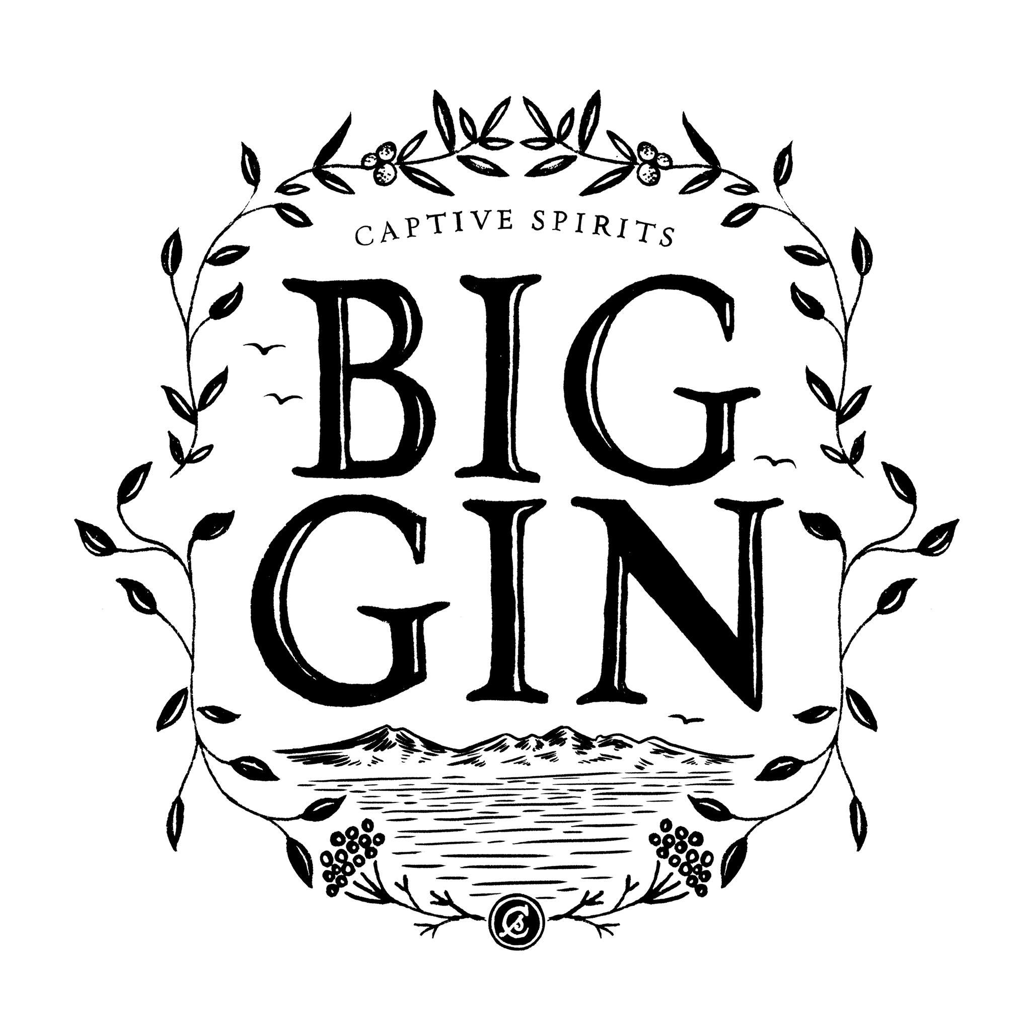 big-gin-logo
